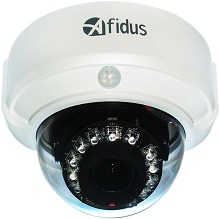 AFIDUS 2M FULL HD 60 FPS IR IP DOME